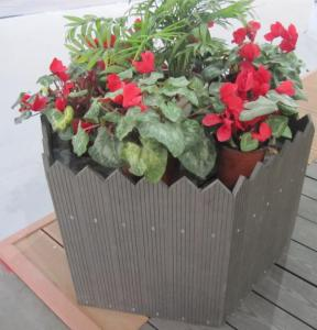 Wood Plastic Composite  Flower Box CMAX N032