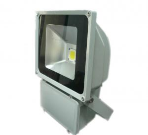 High Efficiency LED Flood Light 100W