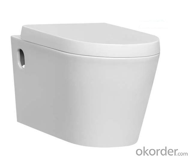 Ceramic Wall Hung Toilet CNBS-005