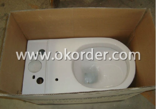Caremic Toilet