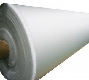 Manufacturer of Fiberglass Fabrics 100g