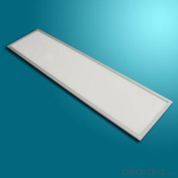 Triac Dimmable LED Panel Light 1200X300mm 48W