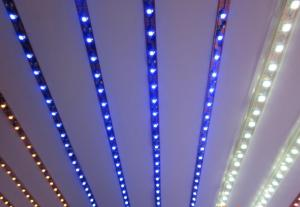 LED Strip Light Flexible strip light/ SMD3528 120LEDs/m ALL Colors/RGB/ Dimmable/Waterproof IP68
