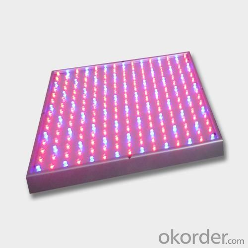 LED Low Power Grow Light  Blue 460nm OEM 14Watt
