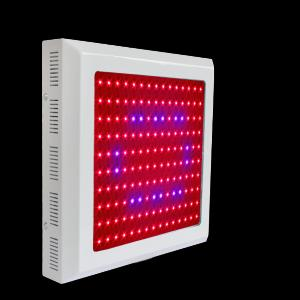 LED Grow Light Red630 Blue460 with150x1Watt  Square