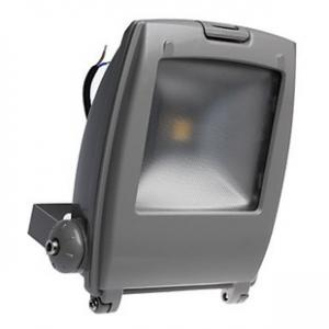 LED RGB Flood Light COB IR Inner Controller High Brightness IP 65 50W