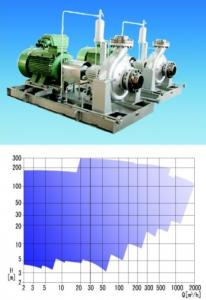 Petrochemical Process Pump