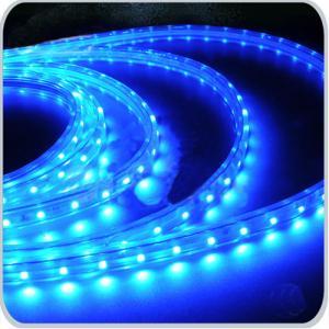 12V /24 V Input Voltage 5M 300Leds Flexible Led Strip 3528
