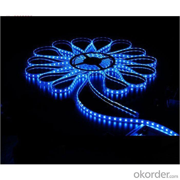 High Quality Lowest Price 24V Rgbw Flexible Led Strip