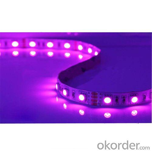 2014 Hot Sale High Quality Factory Price 3 Years Warranty 18-20Lm Smd 5050 Led Strip For Chrismans Tree