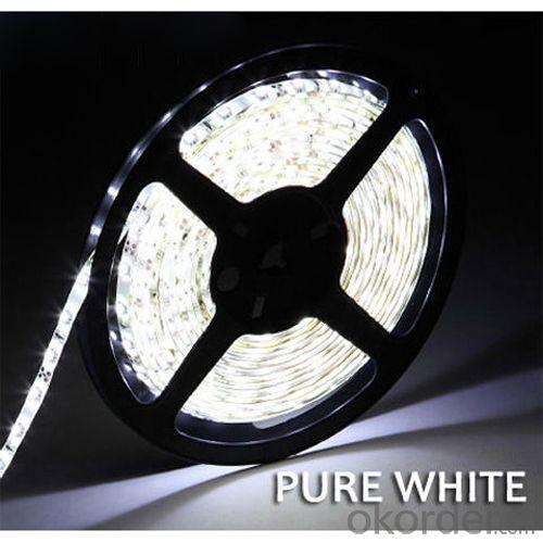 12V 24V Waterproof Glue Surface 5 M 300 Led Rgb Color Flexible Led Strips