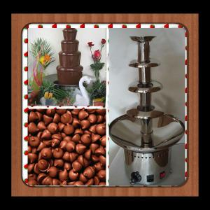 Chocolate/Wine Fondue Fountain