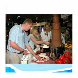 Chocolate Dispensor Fountain/Mini Chocolate Fountain