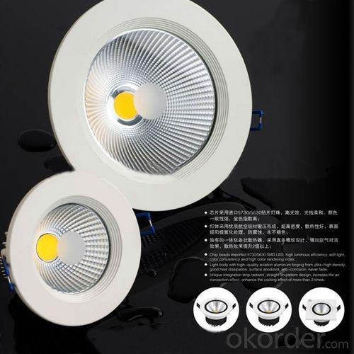 2013 Hot Sale 30w Led Down Light