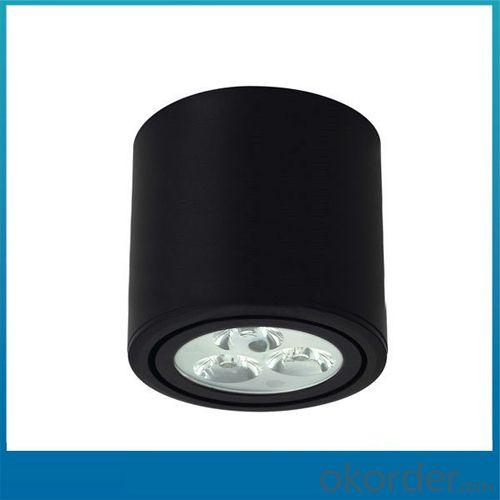 12w LED DownLight,LED DownLight,DownLight LED OB-CL09654