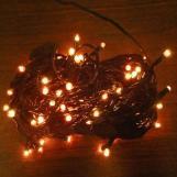 Popular Christmas Lights