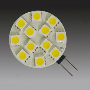 12 SMD G4 LED Light