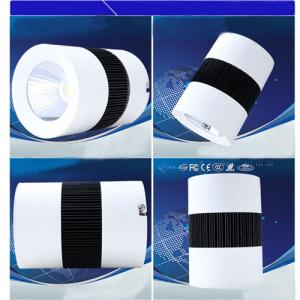Surface Mounted Led Downlight 30w Led COB Downlight