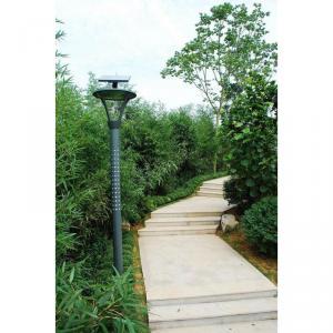 Solar LED Garden Light By Professional Manufacturer