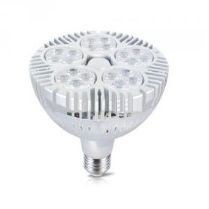 50W Led Flood Light Par38