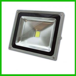 Bridgelux Ra80 Ip68 30W Led Flood Light Ac85-265 Ip68