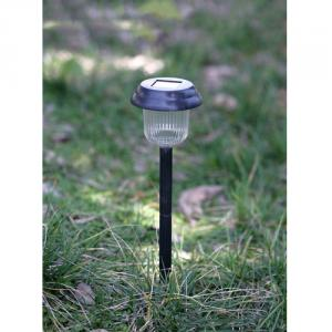 Plastic Solar Garden Light By Professional Manufacturer