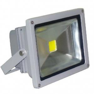 10W/20W/30W/50W Competitive Price Led Reflector