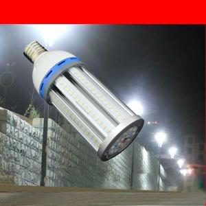 360 Light Degree 125lm 15W E27 E40 Corn LED Landscape Light By Professional Manufacturer