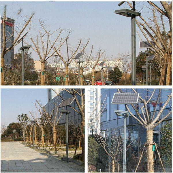 High Quality Hot Sale Solar Garden Lighting From China Factory Manufacturer