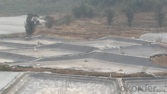 Fish Farm Pond Liner HDPE Geomembrane for Landfill