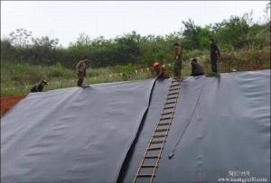 Black Hdpe Plastic Sheet LDPE Geomembrane Suppliers