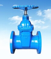 DN125 Ductile Iron Rubber Gate Valve with non-rising stem