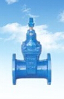 DN100 Cast steel Gate Valve
