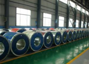 Color Coated Steel Sheet In Coils