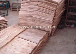 Full Hardwood Core Brown Film Faced Plywood