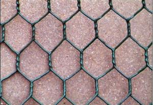 PVC coated Hexagonal Wire Mesh1