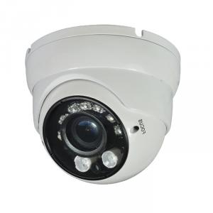 CCTV Camera Metal Dome Camera with 2pcs 30U Array IR and 7pcs Piranha Led