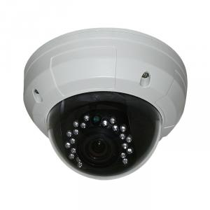 CCTV Camera 4.5 Metal Dome Camera with 21pcs Leds Sony, Sharp CCD Optional