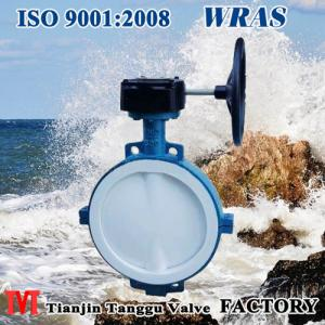 wafer type F4 Lined Butterfly Valve with two bodies