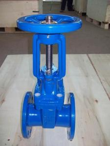 DIRising Stem Resilient Seated Gate Valve