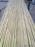Bamboo Sticks Natural for Decoration Bamboo