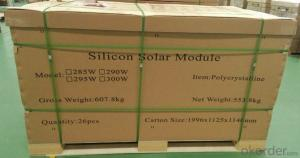 Solar Panels 300w Poly from China with CNBM Brand
