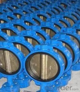 Ductile Iron Class 125 Wafer Type Check Valve