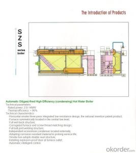 Gas Boiler,Circulating Fluidized Bed Boiler,Boimass Fuel Boiler