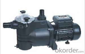 Surface Pump for Swimming and Spa Pool