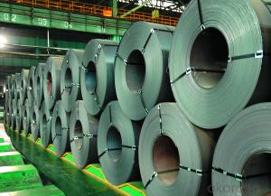 Stainless Steel Coil Hot Rolled 304