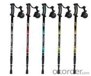 Steel4   alpenstock