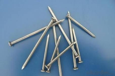 Common Nail Factory Directly Lower Price Widely Use