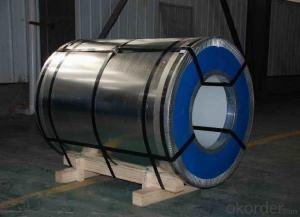 Best Quality Galvanized Steel Coil