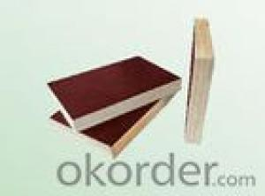 Brown Film Plywood 21mm Thickness